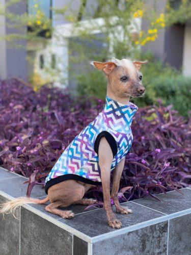Custom Made to Fit Sleeveless Dog Shirt